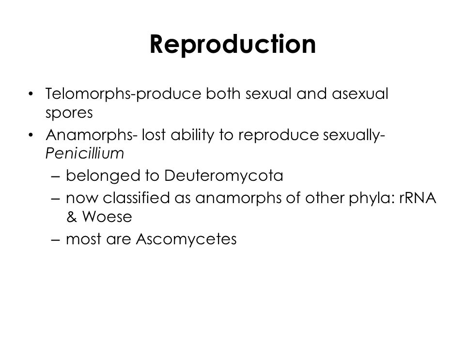 Deuteromycetes asexual reproduction in humans