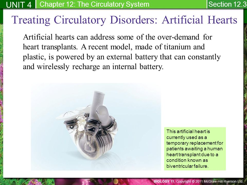 12 3 Circulatory System Disorders: Arteriosclerosis - ppt