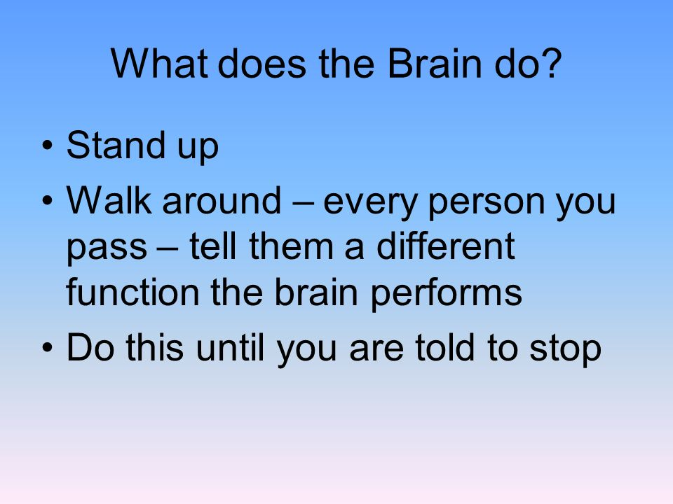 What does the Brain do Stand up
