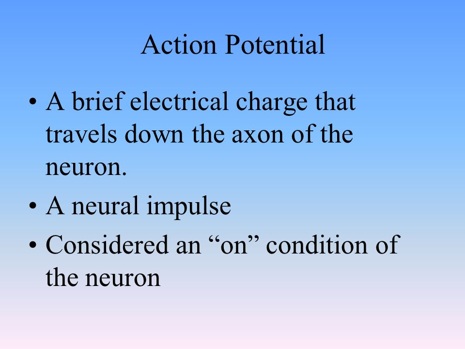 Action Potential A brief electrical charge that travels down the axon of the neuron. A neural impulse.