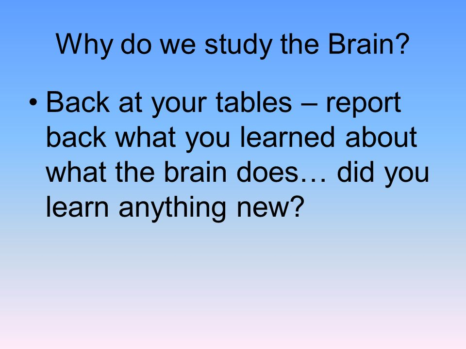 Why do we study the Brain