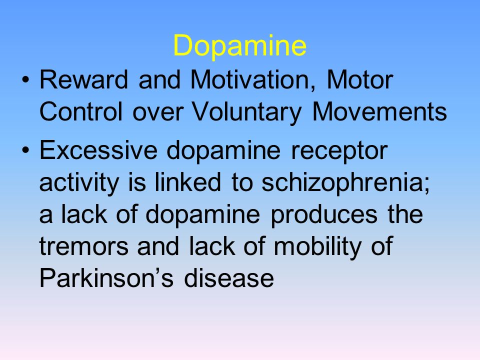 Dopamine Reward and Motivation, Motor Control over Voluntary Movements