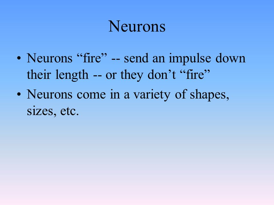 Neurons Neurons fire -- send an impulse down their length -- or they don't fire Neurons come in a variety of shapes, sizes, etc.