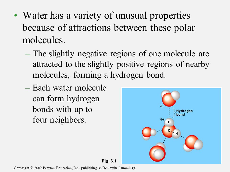 Covalent Bond Physical And Chemical Properties