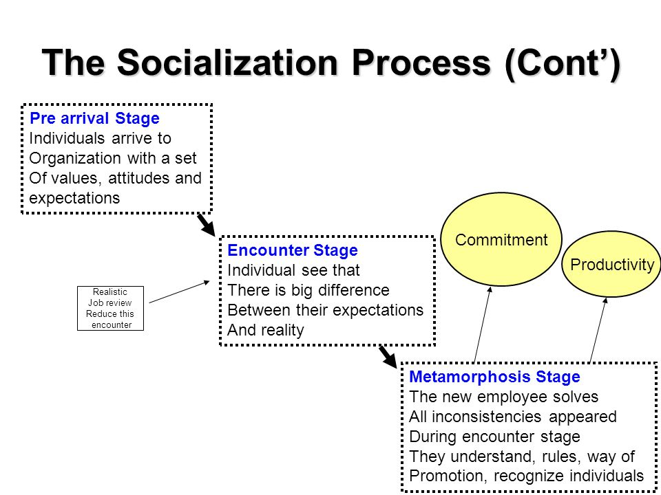 stages of socialisation