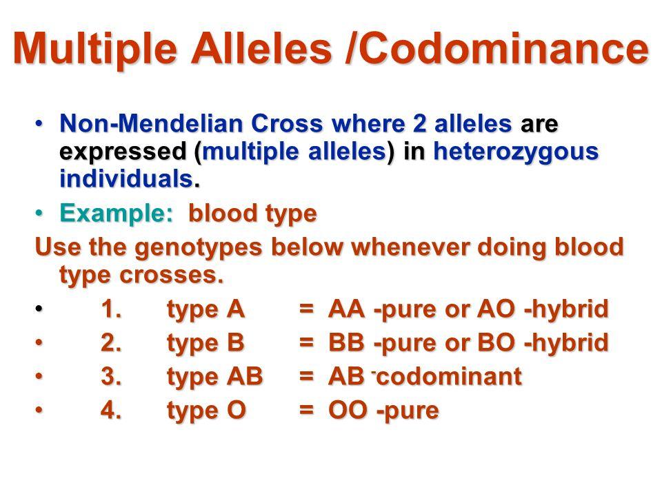 Nonmendelian Problems Ppt Video Online Download. 24 Multiple Alleles Codominance Nonmendelian. Worksheet. Non Mendelian Geics Worksheet At Mspartners.co
