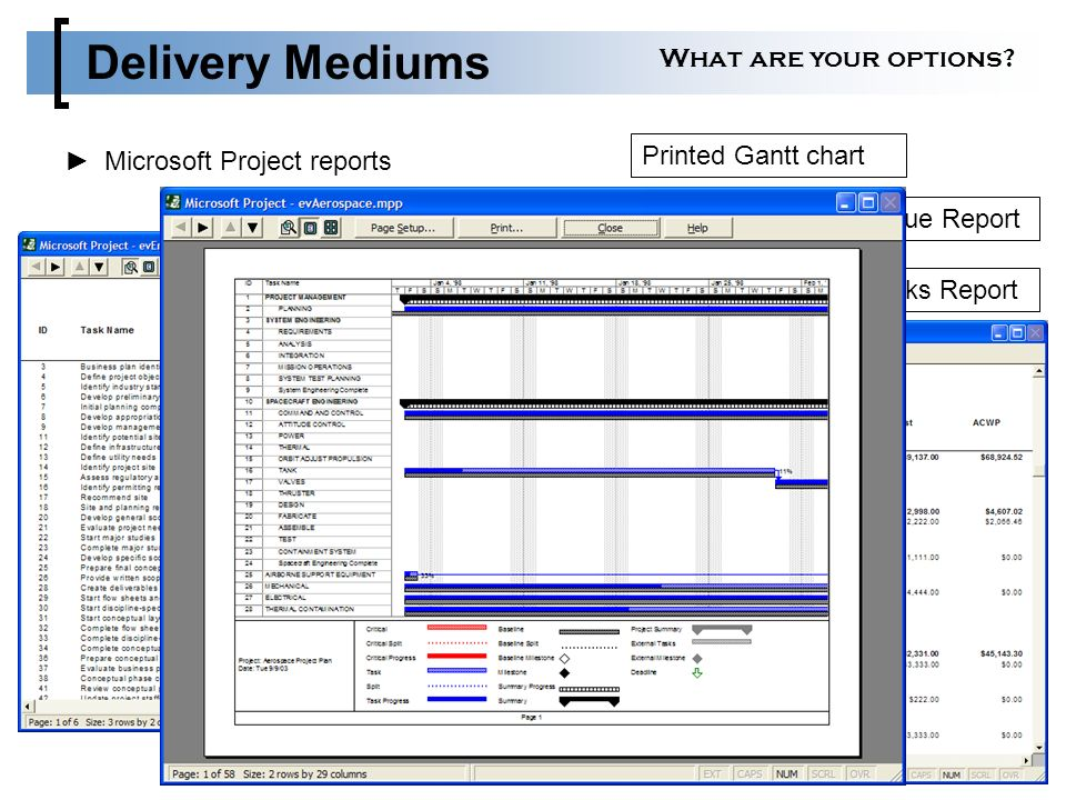 Successfully Presenting Your Microsoft Project Reports Ppt Video
