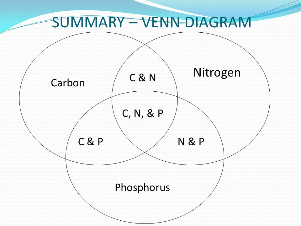 Biogeochemical cycles ppt video online download summary venn diagram nitrogen carbon phosphorus c n c n p ccuart Choice Image