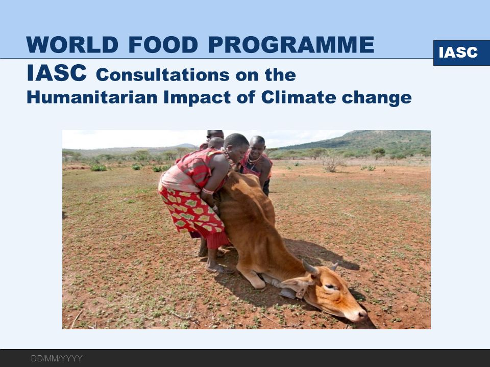 WORLD FOOD PROGRAMME IASC Consultations on the Humanitarian Impact of Climate change