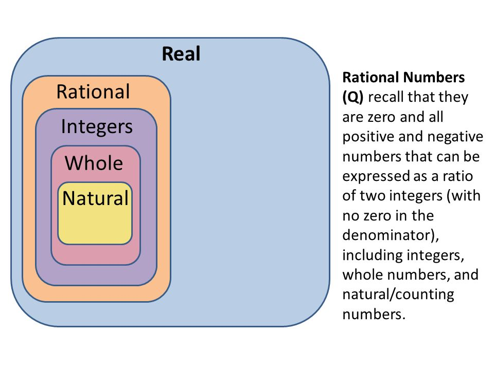 Real Rational Integers Whole Natural