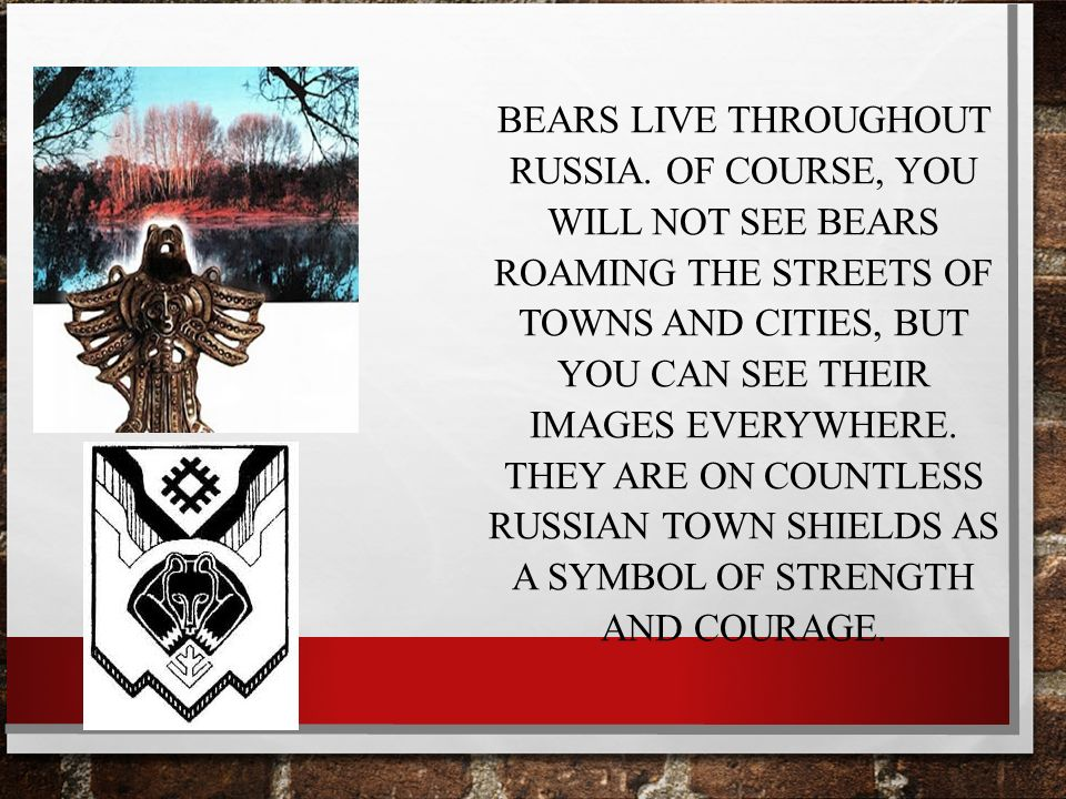 Typical Stereotypes About Russia Russian Culture Russian Character
