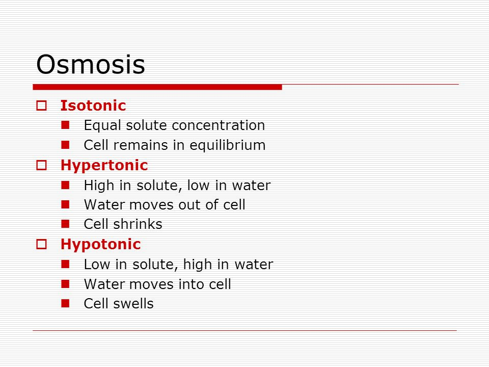 Osmosis Isotonic Hypertonic Hypotonic Equal solute concentration