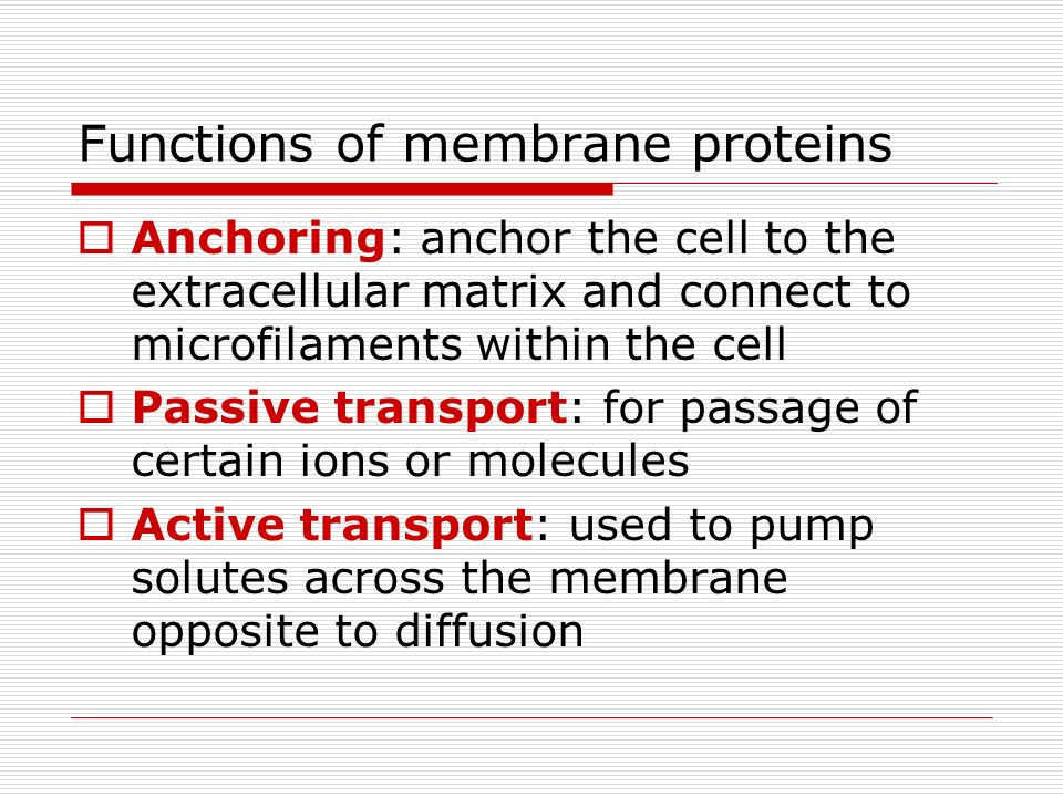 Functions of membrane proteins