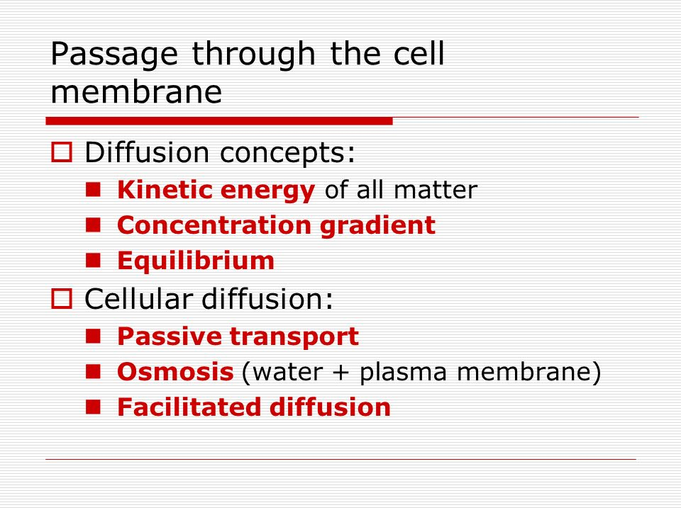 Passage through the cell membrane