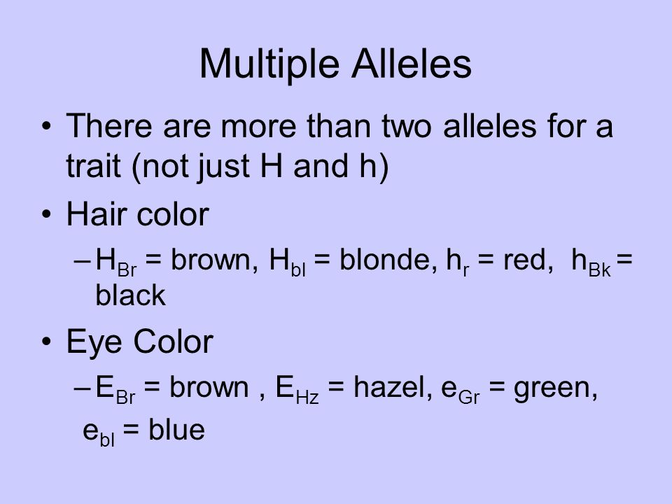what is a multiple allele trait