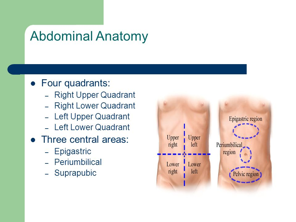 Approach To The Patient With Acute Abdominal Pain Ppt Video Online