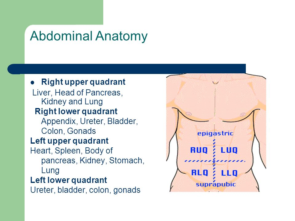 Approach to the patient with acute abdominal pain - ppt video online ...