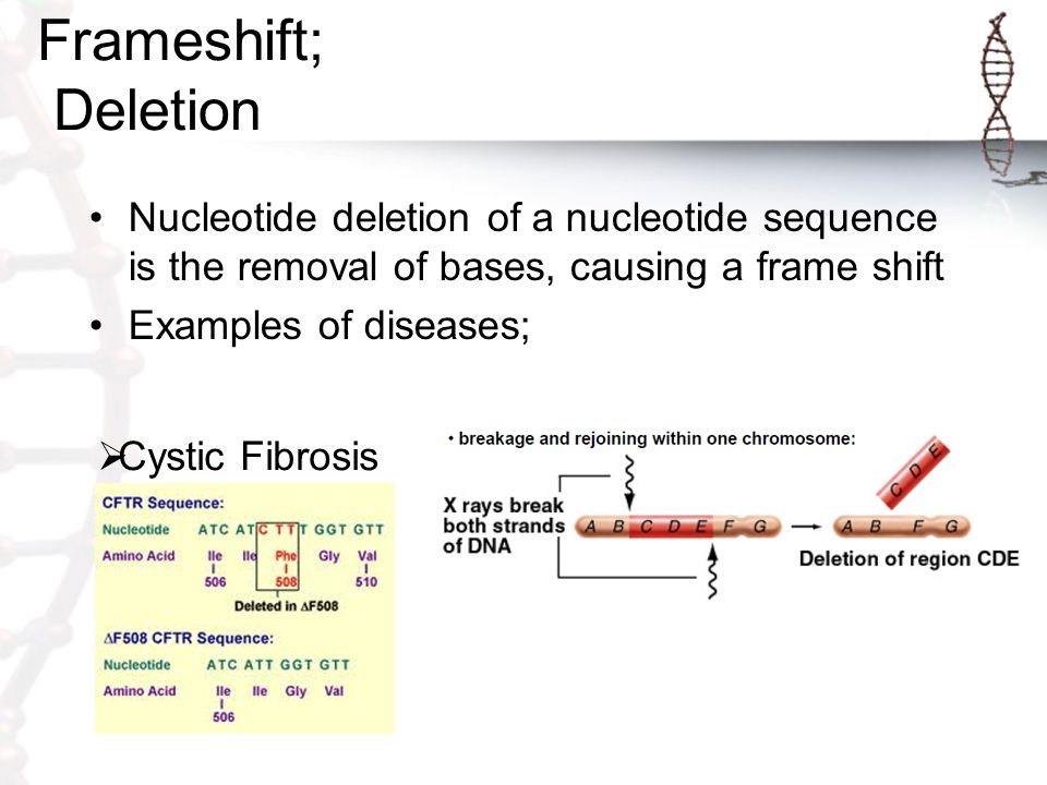 1. What are genetic disorders caused by ppt video online download