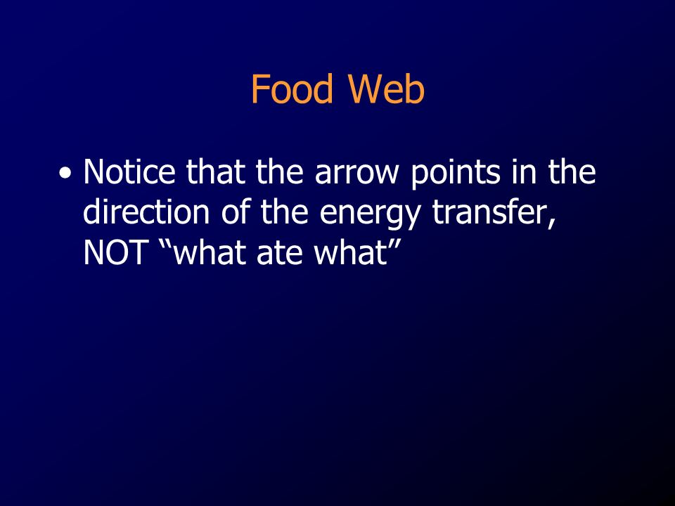 Food Web Notice that the arrow points in the direction of the energy transfer, NOT what ate what