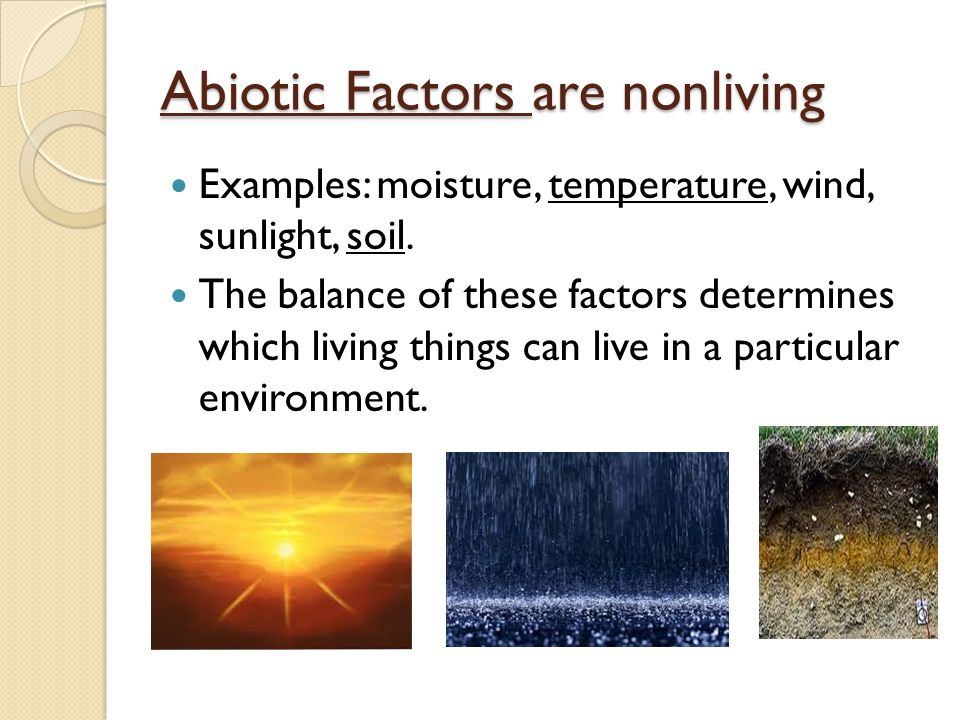 Abiotic Factors are nonliving