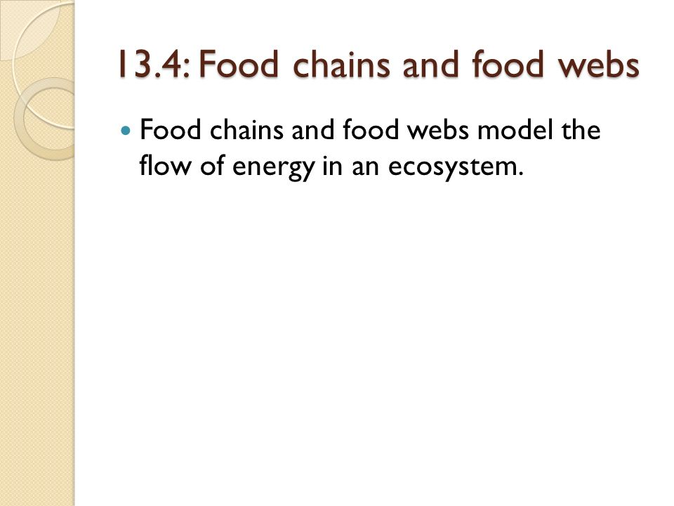 13.4: Food chains and food webs
