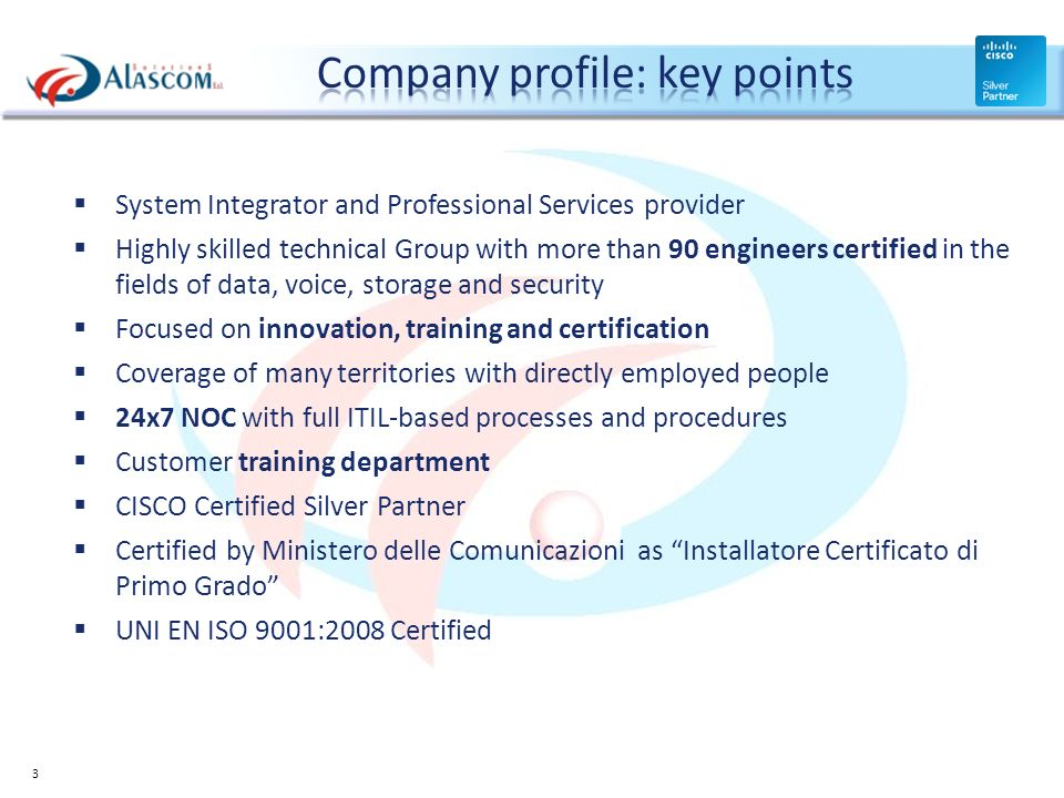 Company profile: key points