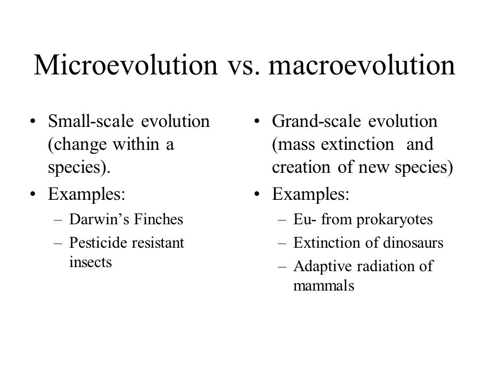 Introduction To Evolution Ppt Video Online Download