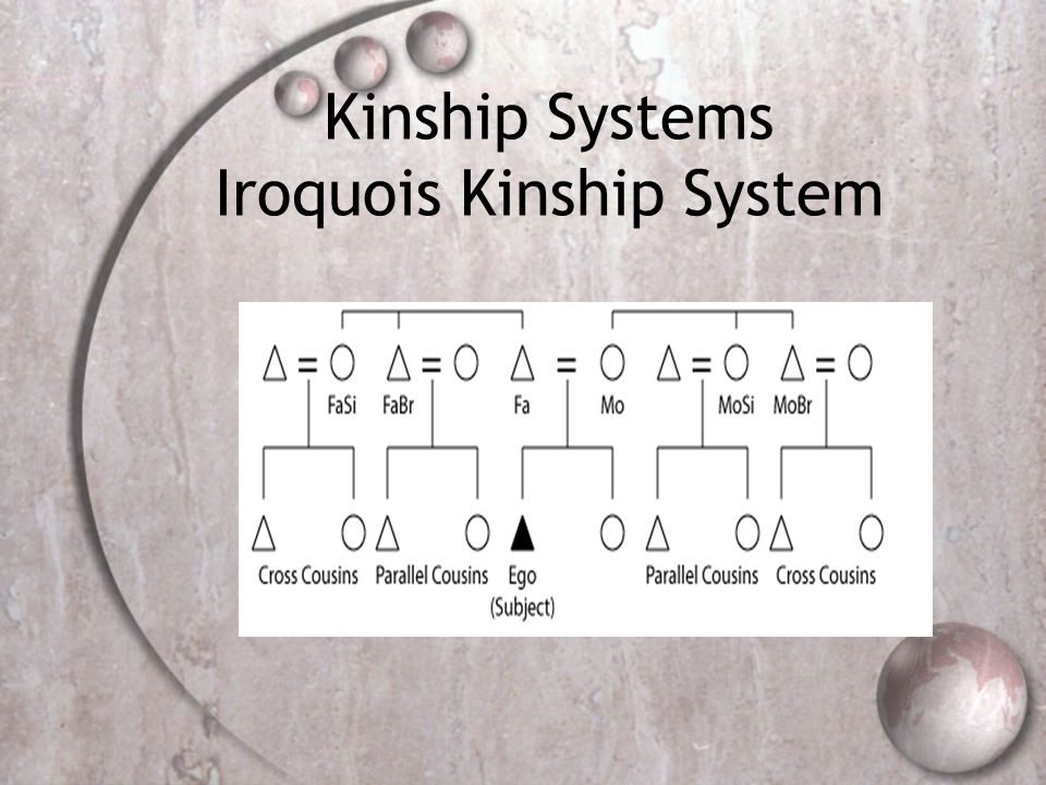 iroquois kinship