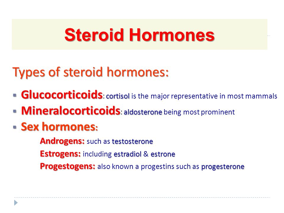 steroid hormones androgens and estrogens