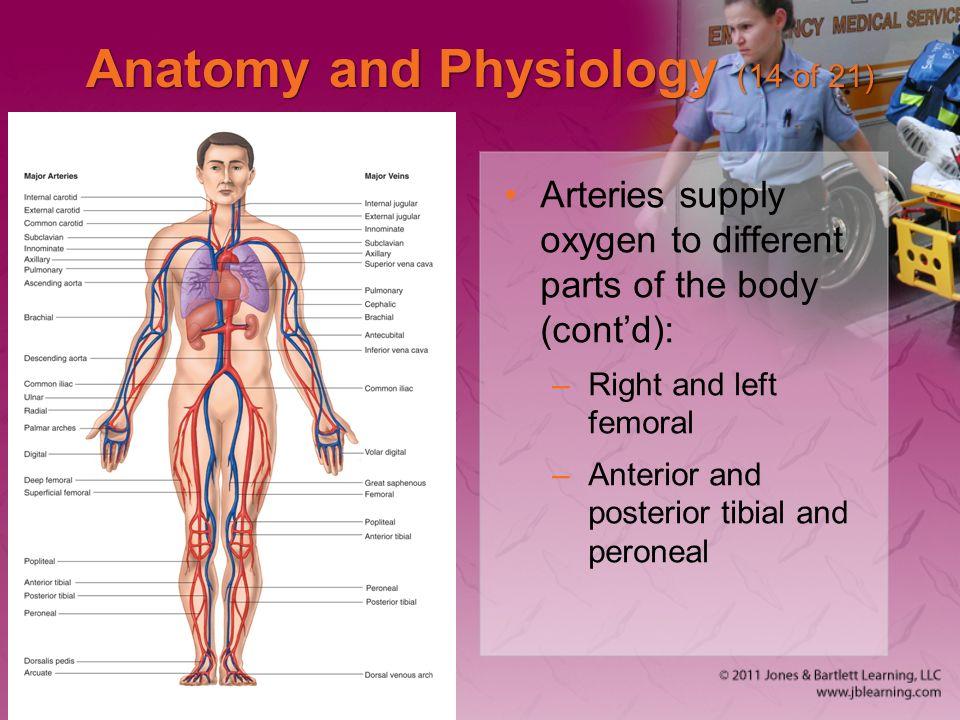 Cardiovascular Emergencies - ppt download