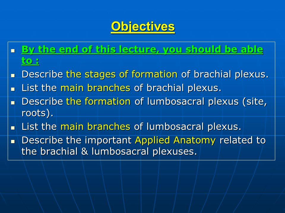 Brachial & Lumbosacral Plexuses - ppt download