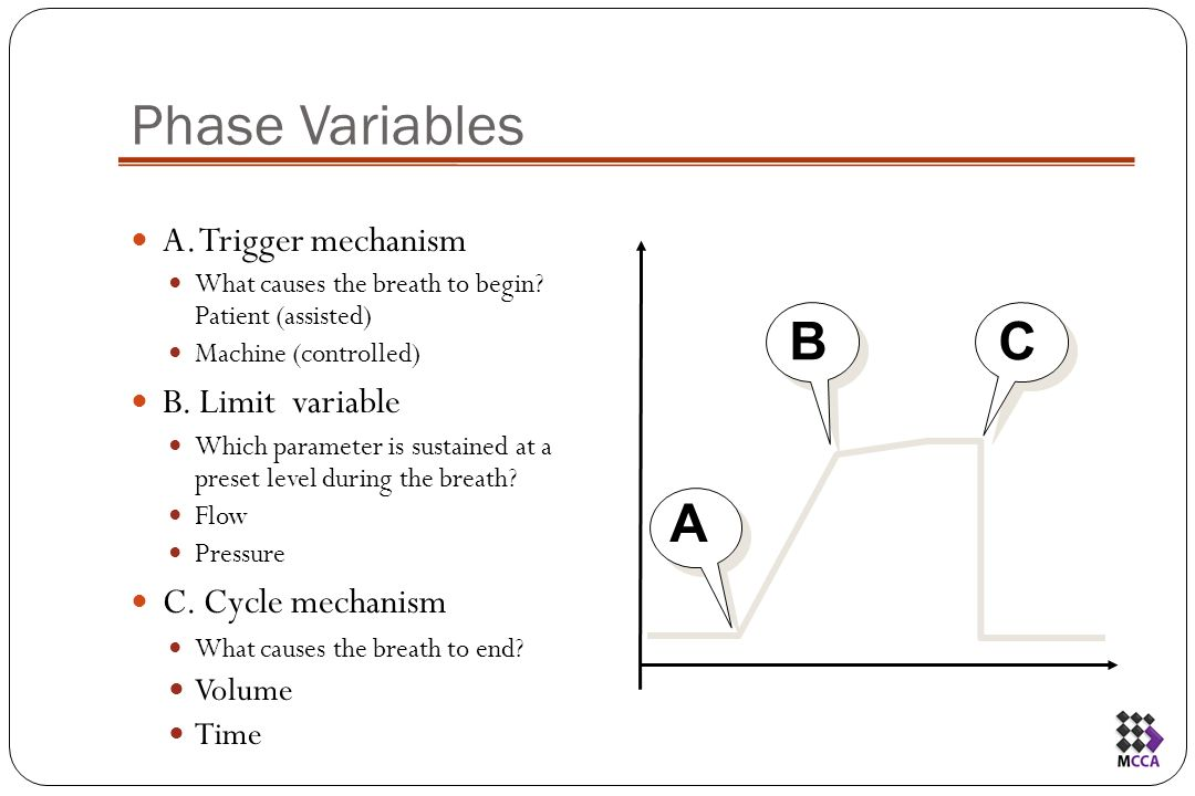 Basic Concepts in Adult Mechanical Ventilation