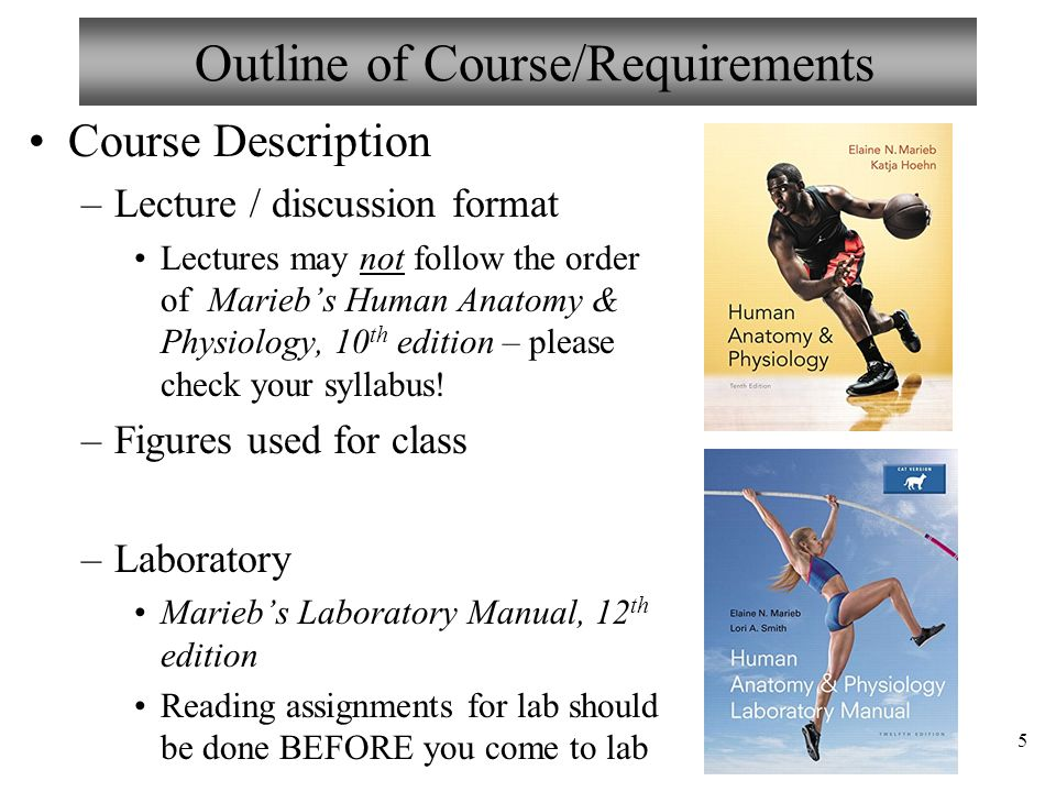 Atractivo Human Anatomy And Physiology Online Course With Lab Regalo ...