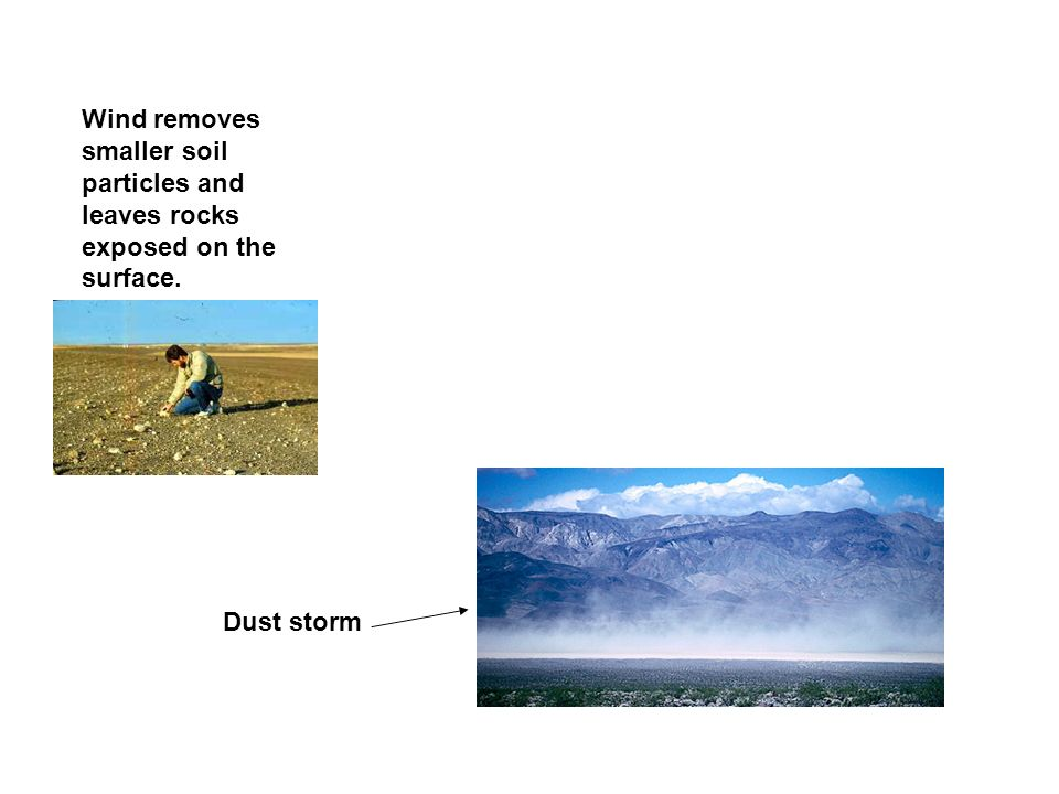 Wind removes smaller soil particles and leaves rocks exposed on the surface.