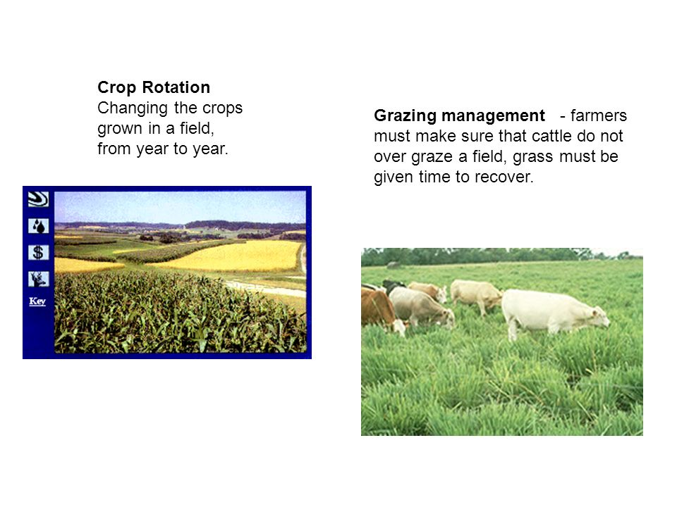 Crop Rotation Changing the crops grown in a field, from year to year.