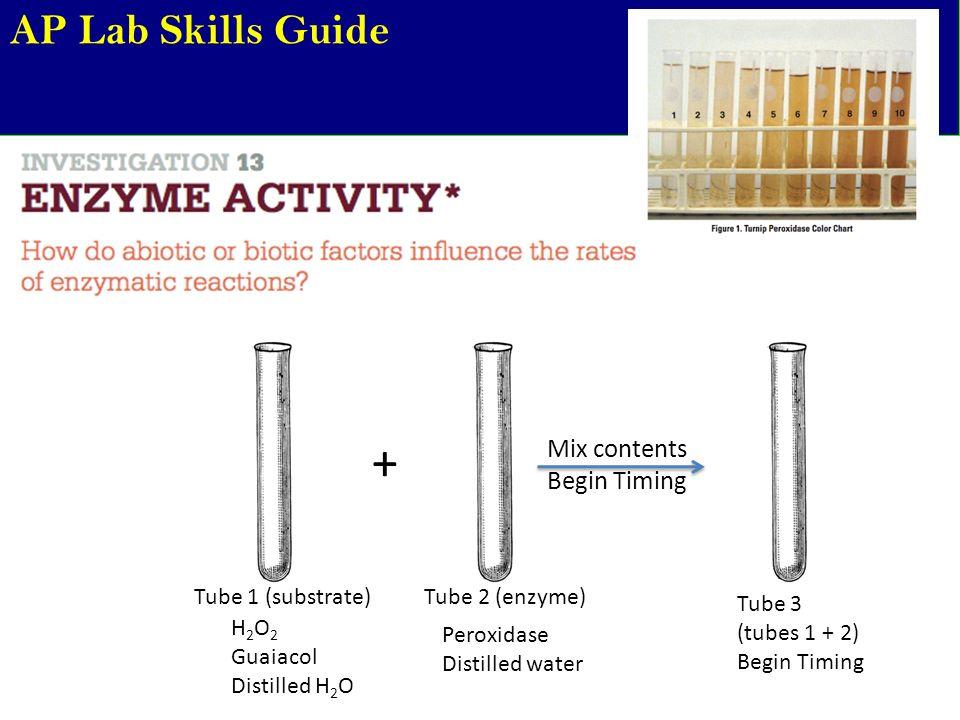 Ap Lab Skills Guide Ppt Video Online Download