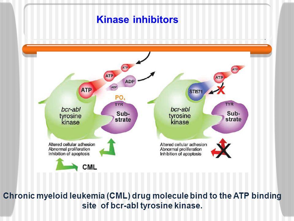 5 kinase inhibitors chronic myeloid leukemia cml drug molecule bind to the atp binding site of bcr abl tyrosine kinase