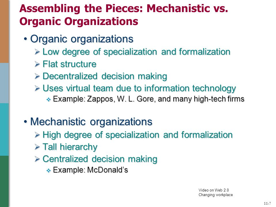 organic organizational structure examples