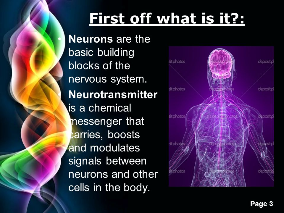 Oneisha j newell dont meth with it free powerpoint templates first off what is it neurons are the basic building blocks of the nervous system toneelgroepblik Images