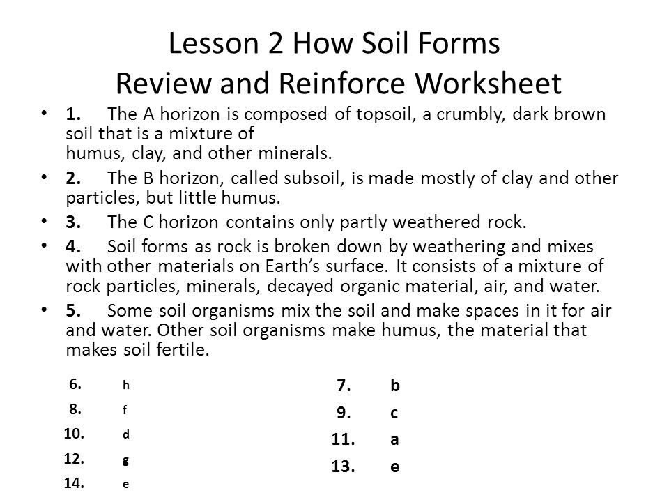 Earths surface chapter 2 weathering and soil ppt video online lesson 2 how soil forms review and reinforce worksheet publicscrutiny Gallery