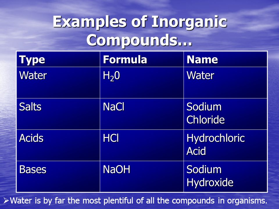 Water, Carbohydrates And Lipids