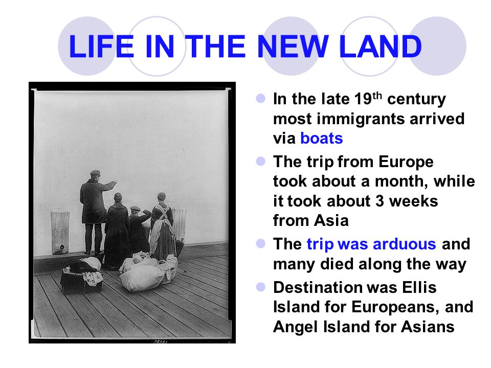 LIFE IN THE NEW LAND In the late 19th century most immigrants arrived via boats.