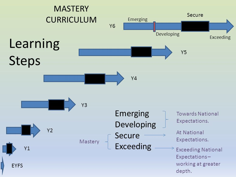 Learning Steps MASTERY CURRICULUM Emerging Developing Secure Exceeding