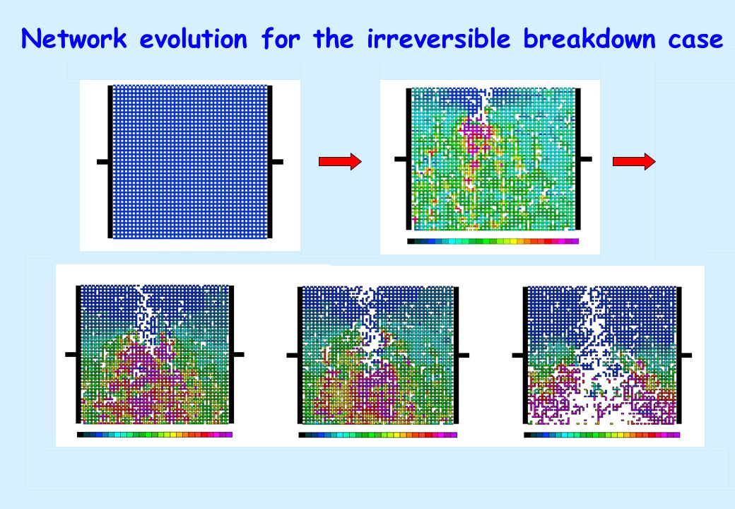 Network evolution for the irreversible breakdown case
