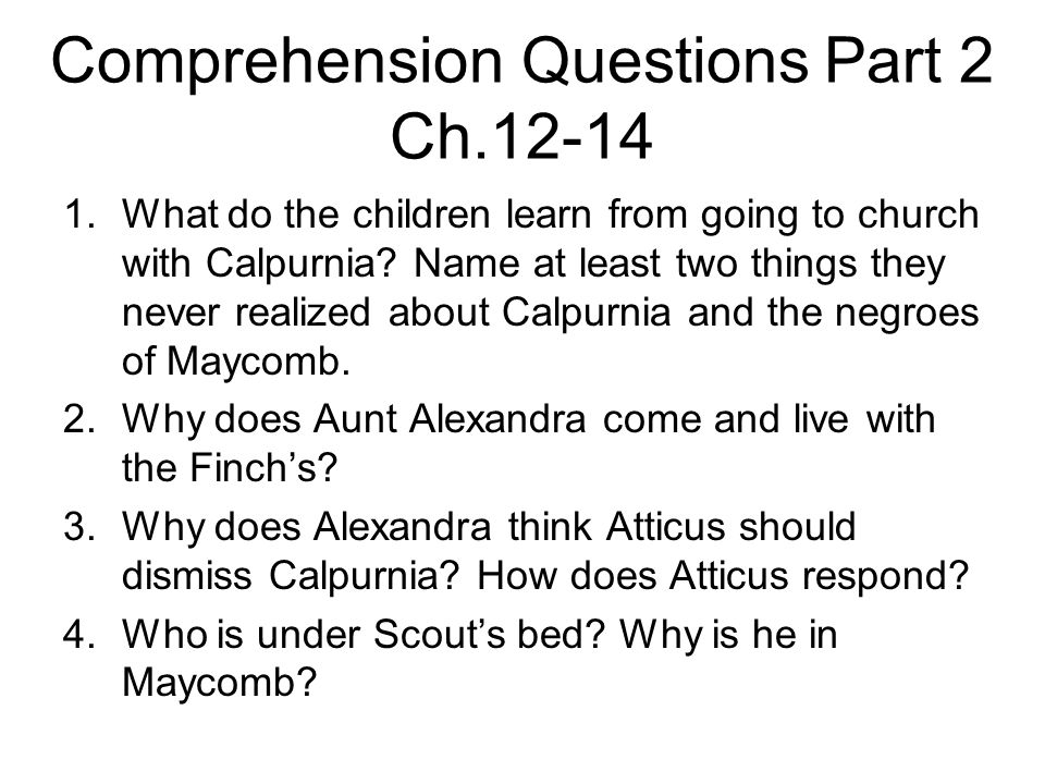 to kill a mockingbird chapter 12 questions
