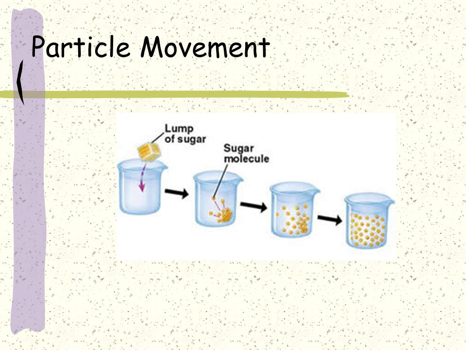 Particle Movement