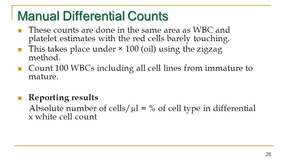 wbc differential count procedure