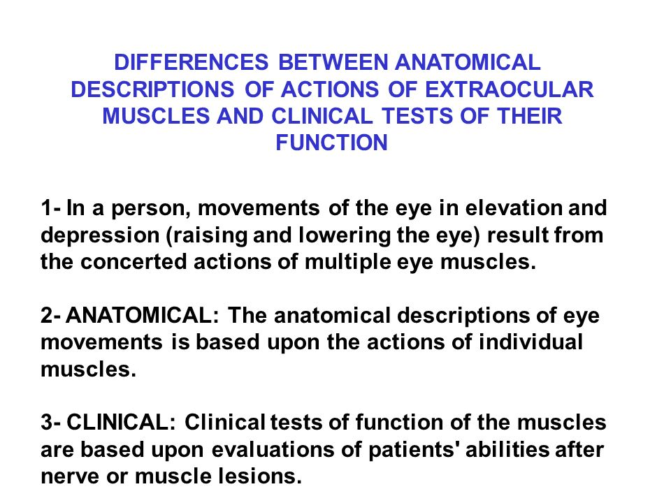 Differences Between Anatomical Descriptions Of Actions Of