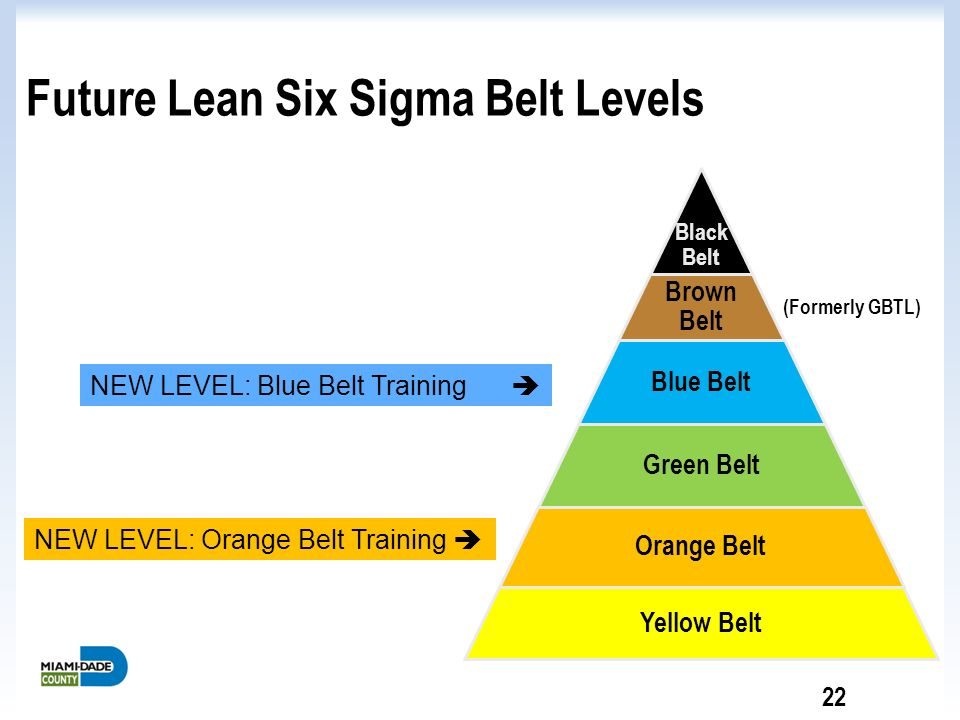 six sigma solve high staff turnover Six sigma six sigma introduction six sigma is a quality improvement method that is being used more frequently in healthcare this tool was developed and used in industry since around 1980 and began to be used in healthcare in the 1990's (powell, rushmer, & davies, 2009.