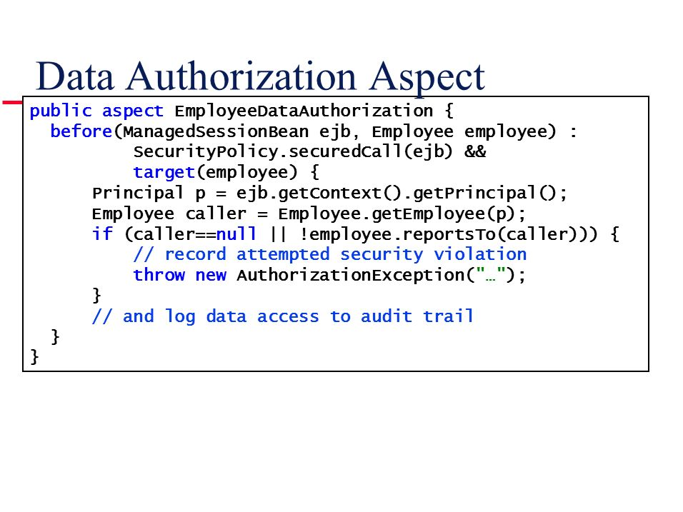 Data Authorization Aspect